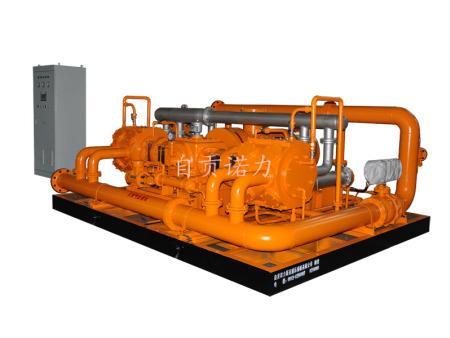 DW-21/1.5-4型沼气压缩机(3000Nm3,0.4Mpa)